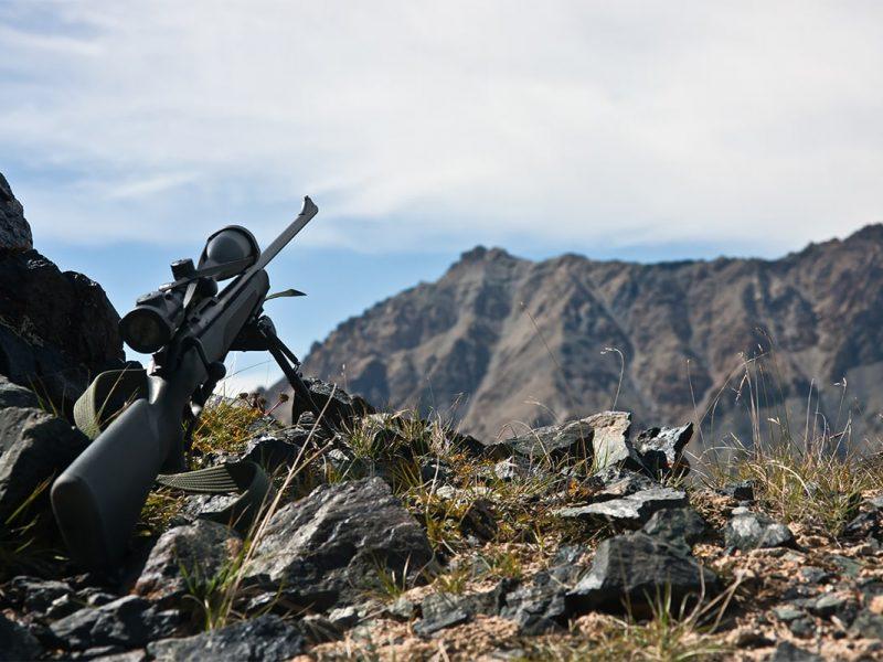 Av Tüfekleri Nereden Temin Edilir?